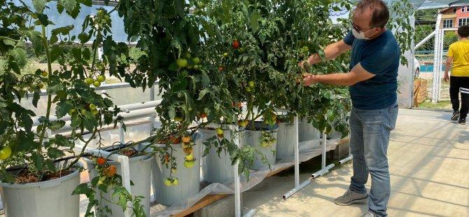 genclerle-robotik-sistem-bitki-yetistiriyoruz2.jpeg