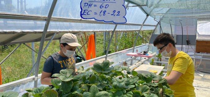 genclerle-robotik-sistem-bitki-yetistiriyoruz3.jpeg