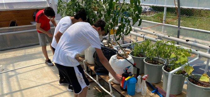 genclerle-robotik-sistem-bitki-yetistiriyoruz4.jpeg